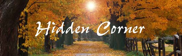 Welcome to Hidden Corner
